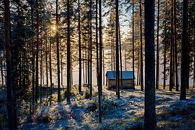 Västernorrland - p235m1116459 by KuS