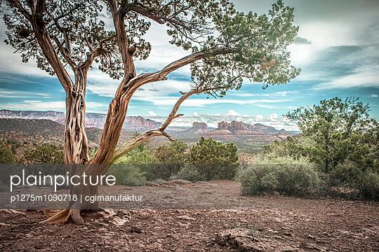 Landschaft Sedona, Yavapai - p1275m1090718 von cgimanufaktur