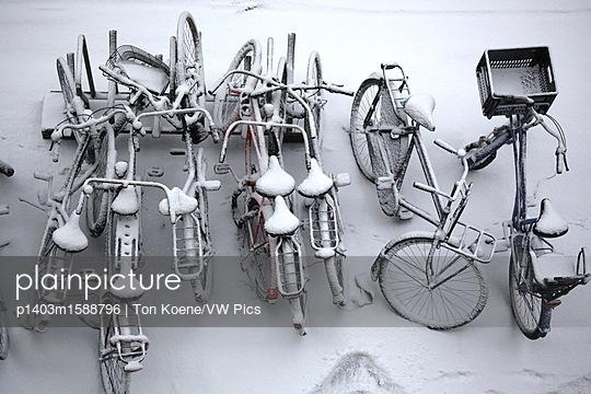 p1403m1588796 von Ton Koene/VW Pics