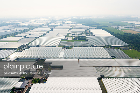 Greenhouses, Westland, Zuid-Holland, Netherlands - p429m2004565 by Mischa Keijser