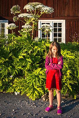 Little girl in front of hogweed - p1418m2013879 by Jan Håkan Dahlström
