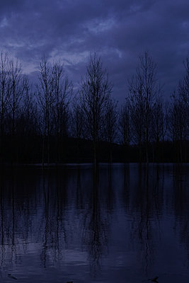 Dark floods 2 - p1402m2164181 by Jerome Paressant