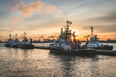 Germany, Hamburg, Altona, Neumuehlen, towboats in harbor at sunrise - p300m2082987 von Kerstin Bittner