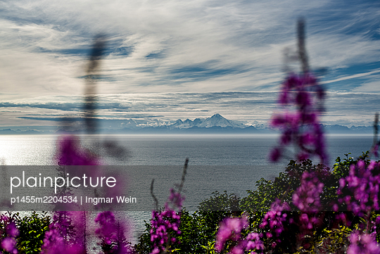 View through flowers onto sea and mountain range - p1455m2204534 by Ingmar Wein