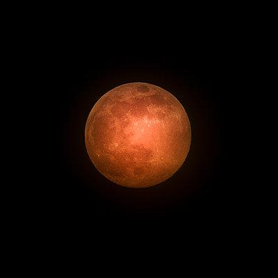 Super Moon 2020 - p1543m2175172 by Sophia Snadli