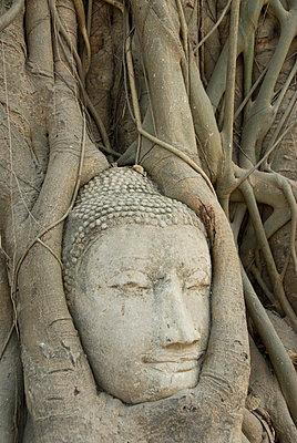 Buddha head - p871m674424 by Richard Maschmeyer