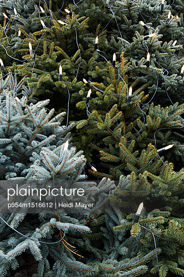 Weihnachtsbaummix - p954m1516612 von Heidi Mayer