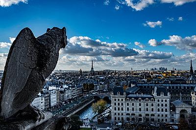 Kathedrale Notre-Dame de Paris - p1243m1515692 von Archer