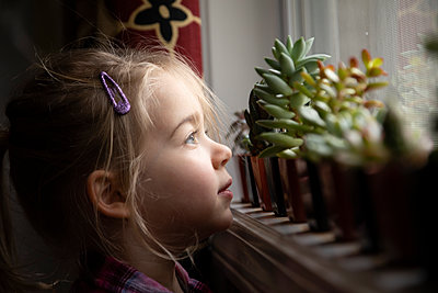 Portrait of a young girl looking out a window by succulents - p1480m2148199 by Brian W. Downs