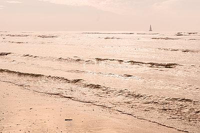 Abends am Meer - p299m1110884 von Silke Heyer