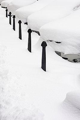 Snow flurry - p422m1060342 by Büro Monaco