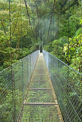 Hanging Bridges Trail - p6510229 by John Coletti photography