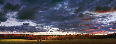 Dramatic sky over rural landscape - p555m1454221 by Chris Clor