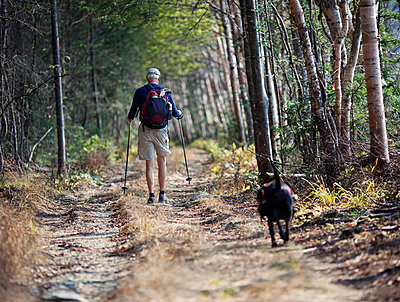 A man wearing a backpack and his dog walk along a wooded dirt track in Maine - p343m757261f by Chris Bennett