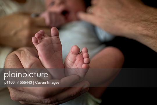 p1166m1555443 von Cavan Images