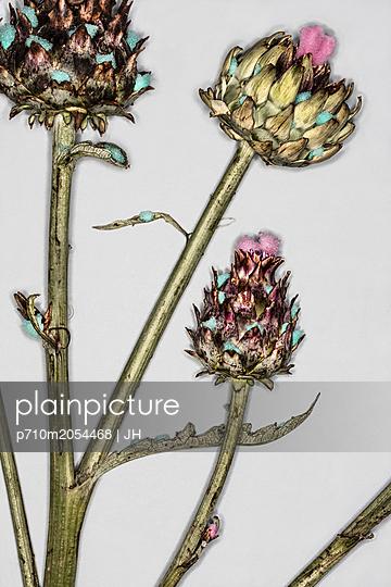 Kunstblumen - p710m2054468 von JH