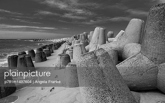 Tetrapoden am Strand - p781m1497604 von Angela Franke