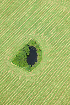 Aerial view of striped field with a pond - p1048m2088080 by Mark Wagner