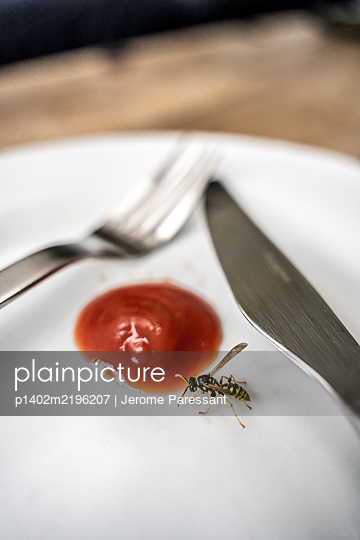 Wasp on a plate with ketchup - p1402m2196207 by Jerome Paressant