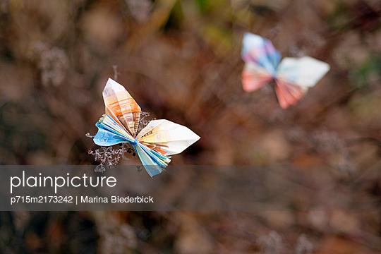 Two butterflies, folded money - p715m2173242 by Marina Biederbick