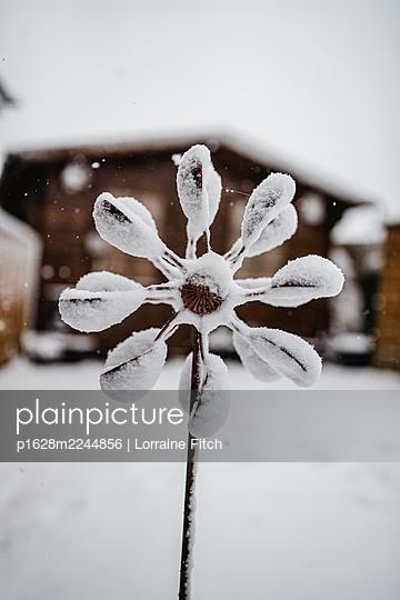 Verschneite Windmühle im Garten - p1628m2244856 von Lorraine Fitch