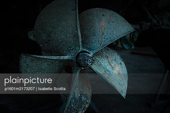 Propeller - p1601m2173207 by Isabelle Scotta