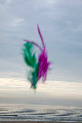 Colourful feathers floating midair - p1385m1441127 by Beatrice Jansen