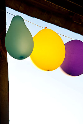 Luminous balloons in the barn - p533m2065602 by Böhm Monika
