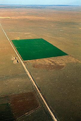 Grünes Feld - p1048m992613 von Mark Wagner