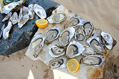 Oysters - p1468m1528570 by Philippe Leroux