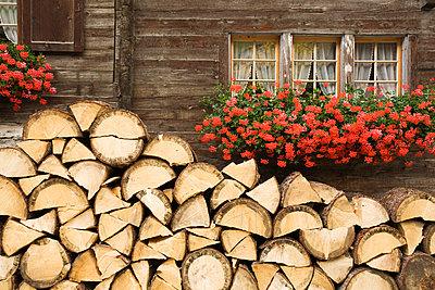 p3007539f von Gaby Wojciech