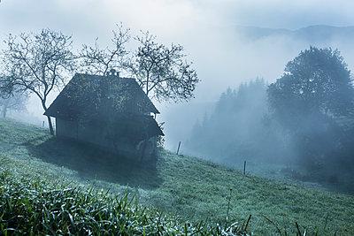 Haus im Nebel - p1398m1574378 von Tabitha Genoveva Harter