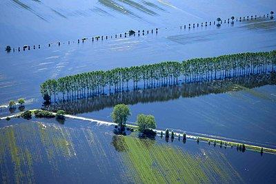 Hochwasser, Untere Havel - p1016m1590772 von Jochen Knobloch
