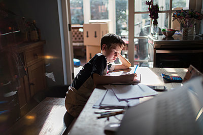 Boy doing homework at dining table - p1023m2200996 by Paul Bradbury
