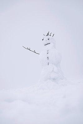 Snowman - p335m1123059 by Andreas Körner