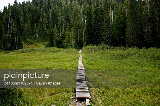 p1166m1182574 von Cavan Images