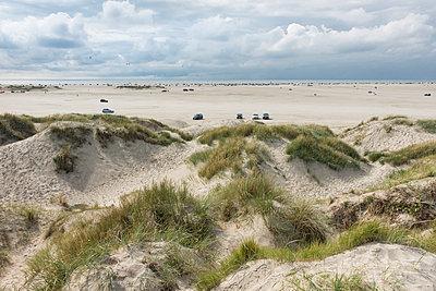 Denmark, Romo, cars on the beach - p300m1505579 by HWO
