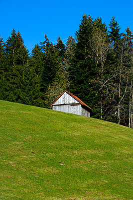 Hut at the edge of a forest - p2480963 by BY