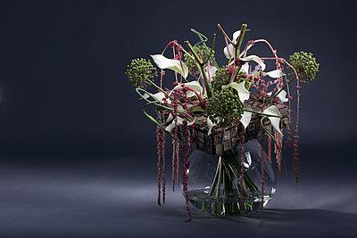 Bunch of flowers with bark, Allium, Allium sativum var. ophioscorodon, Amaranthus caudatus and Anthurium - p300m1014945 by Anna Müller