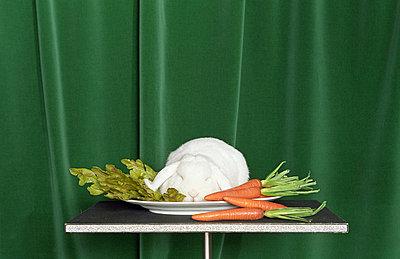 Kaninchen mit Salat - p4470251 von Anja Lubitz