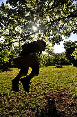 Schaukelnder Junge - p8290106 von Régis Domergue
