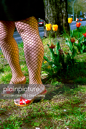 Fishnet stockings and flowers - p1210m1564775 by Ono Ludwig