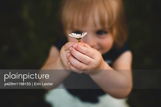 p429m1198153 von Erin Lester