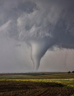 p429m1156316 von Jason Persoff Stormdoctor