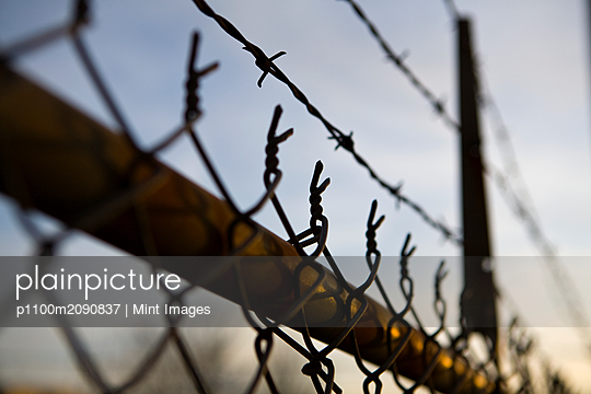 Chain Link Fence - p1100m2090837 by Mint Images