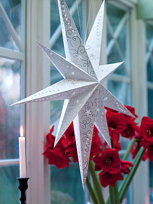 Christmas star shape decoration in window - p312m714814 by Per Magnus Persson