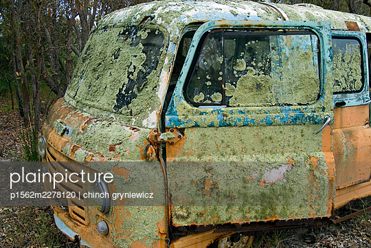 Old Abandoned Vehicle Covered in Lichen - p1562m2278120 by chinch gryniewicz