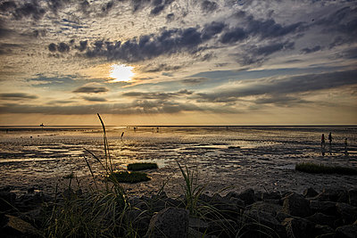 Germany, Dithmarschen, Friedrichskoog-Spitze, Sunset at the North Sea tidelands - p300m1115150f by Dirk Kittelberger