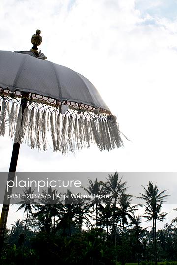Asiatischer Sonnenschirm und Palmen im Gegenlicht - p451m2037575 von Anja Weber-Decker