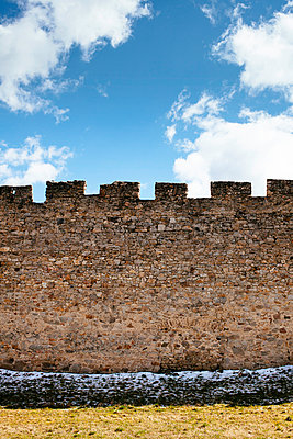 Castle wall - p728m1004814 by Peter Nitsch